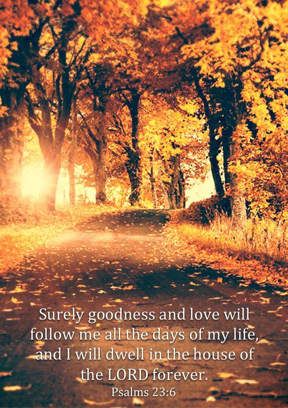 Psalm 23 v 6