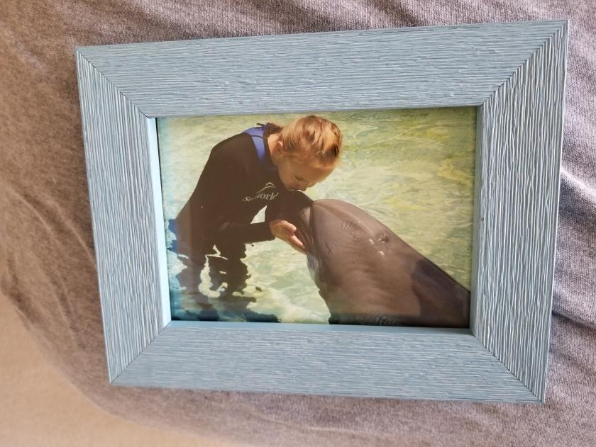 Rosie dolphin kiss