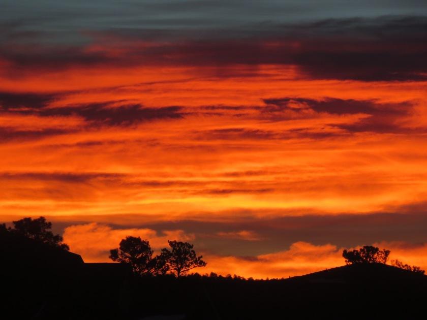 Sunrise (11) 12-10-16