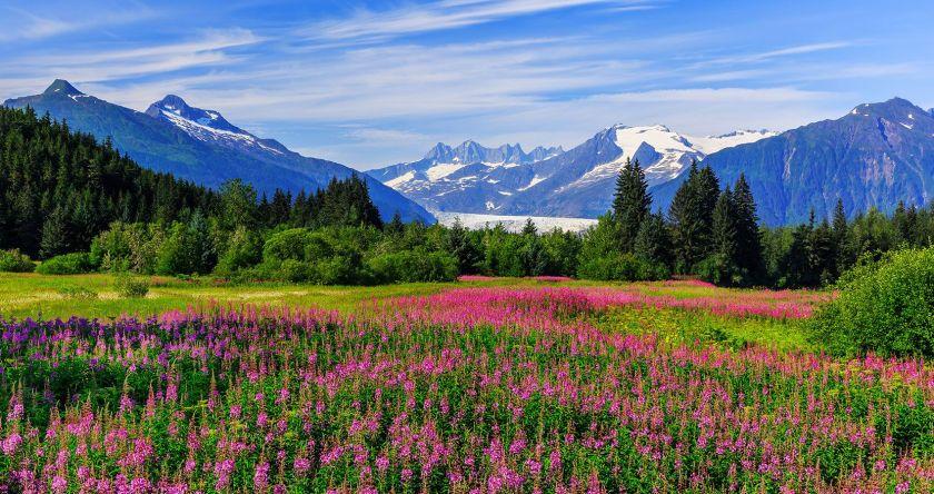 Alaska best