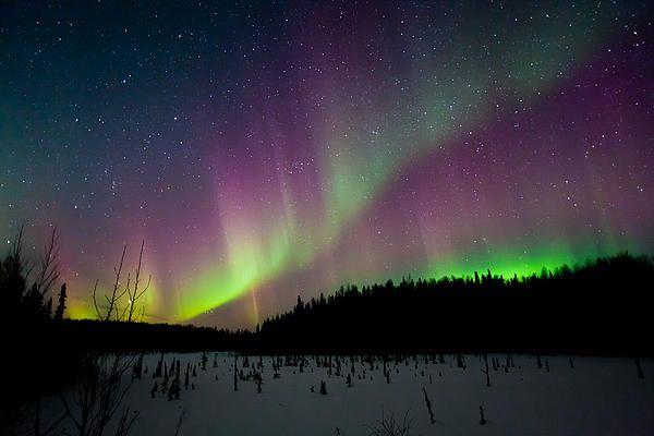 Alaska northern lights pink