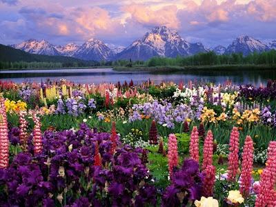 Alaska picture beautiful