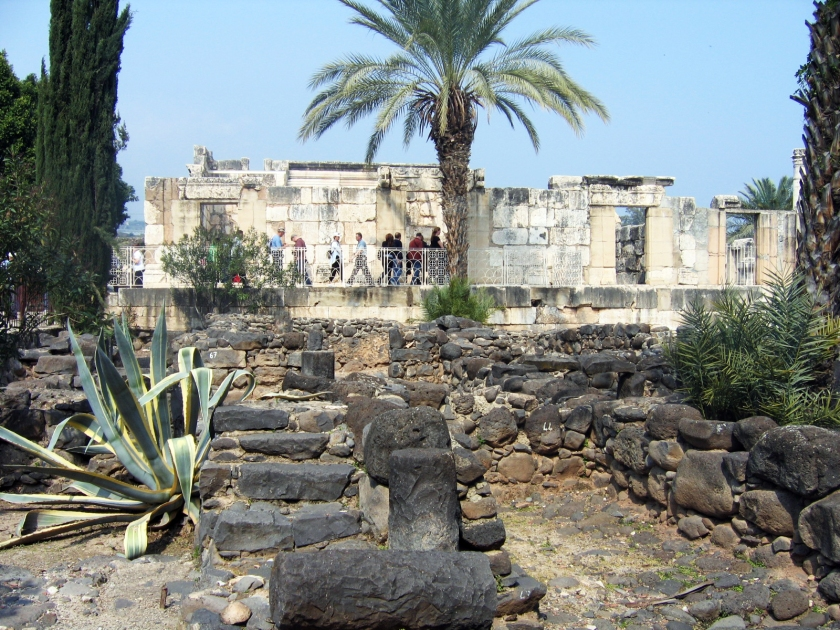 Capernaum Synagogue plants