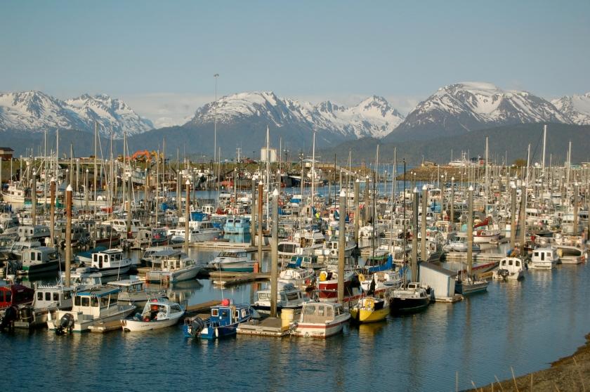 Homer boat dock