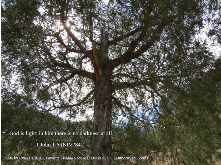 Pic quote Cool tree 1 John 1 v 5