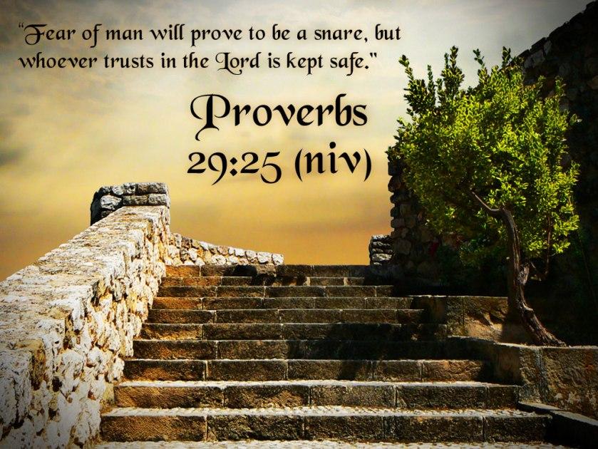Proverbs 29 v 25