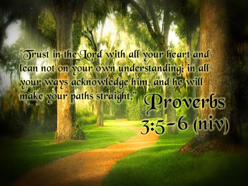 Proverbs 3 v 5 & 6