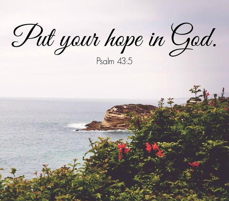 Psalm 43 v 5