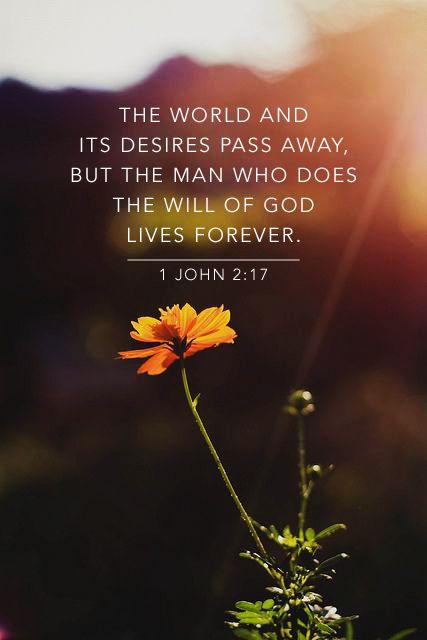 1 John 2 v 17