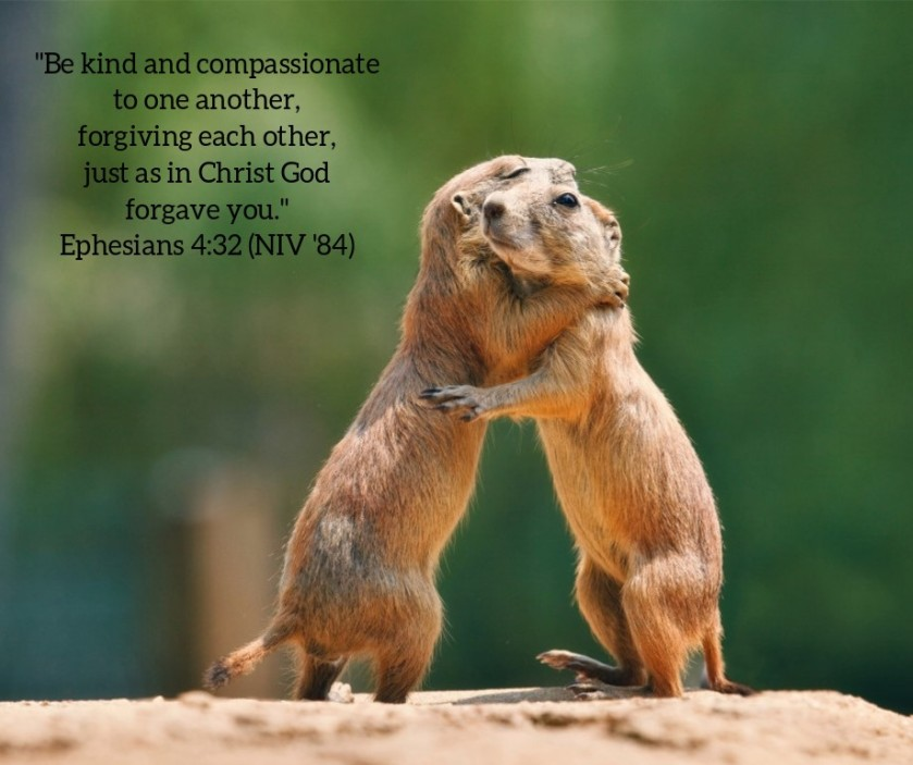Pic quote Eph 4 v 32 prairie dogs