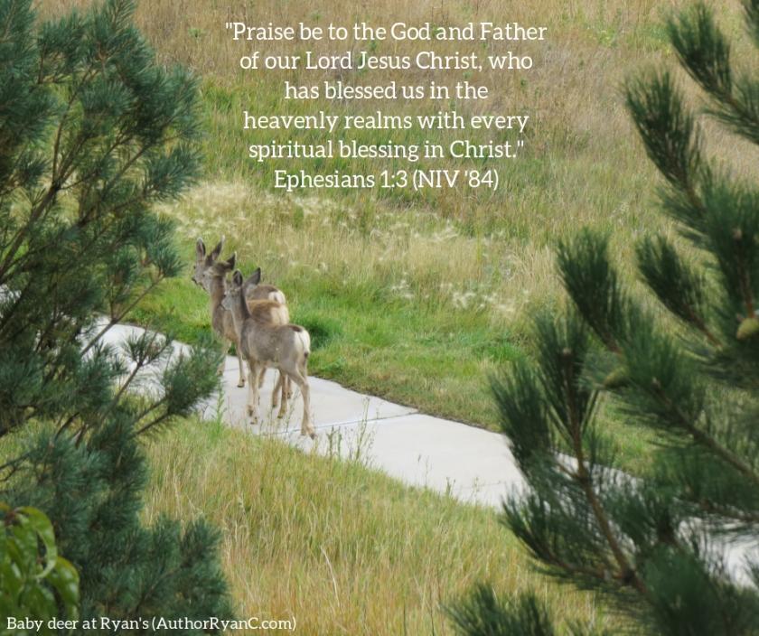 Pic quote Ephesians 1 v 3