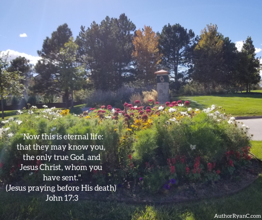 Pic quote John 17 v 3