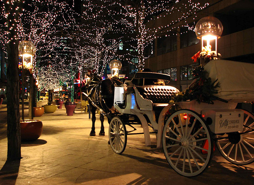 16th Street Mall Christmas carriage
