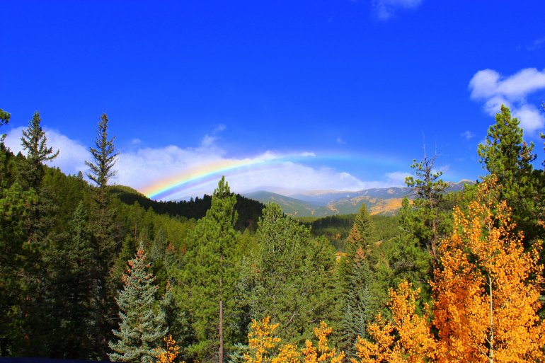 Colorado rainbow best