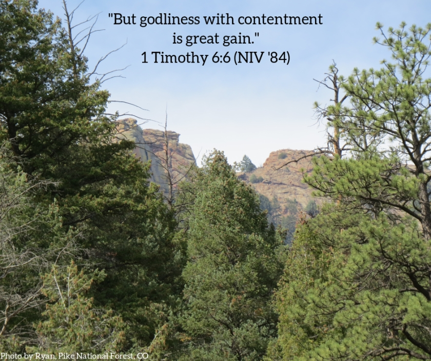 Pic quote 1 Timothy 6 v 6