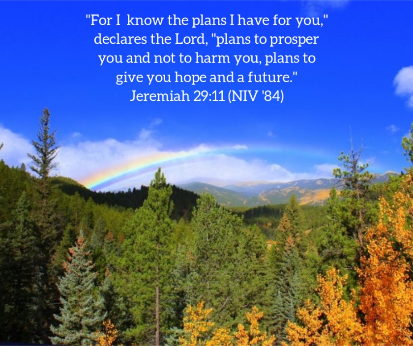 Pic quote Jeremiah 29 v 11