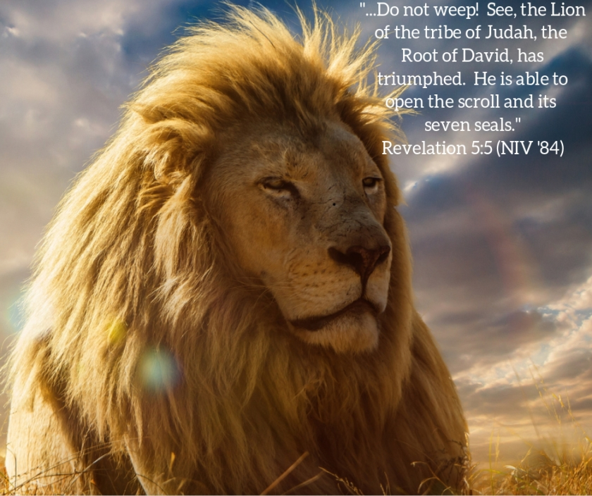 Pic quote Rev 5 v 5 Lion