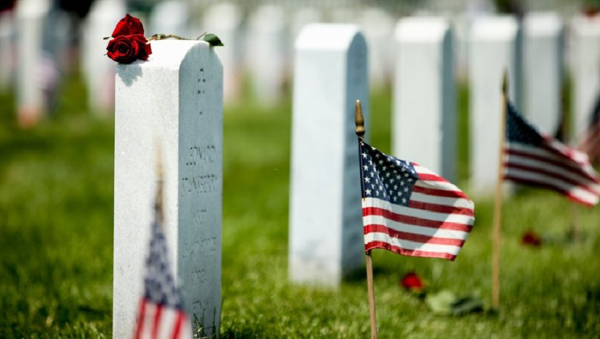 Veterans Day graves