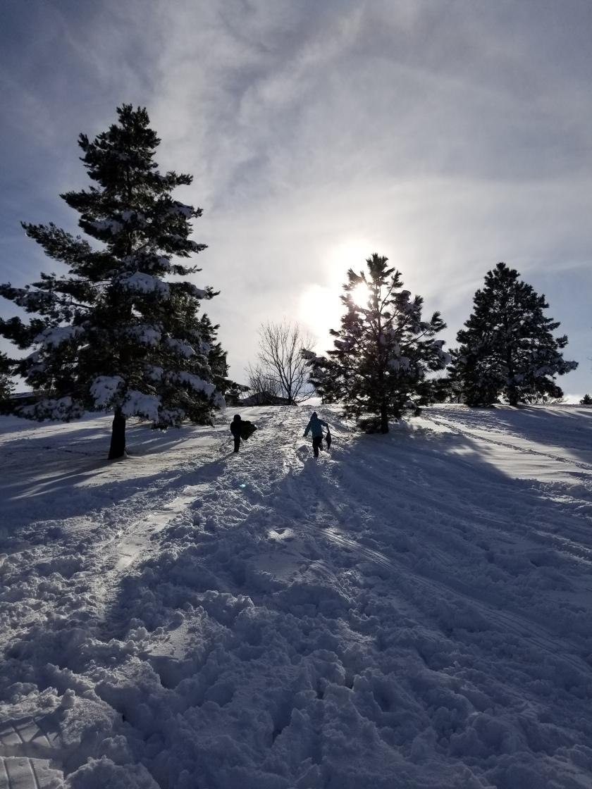 sledding 1