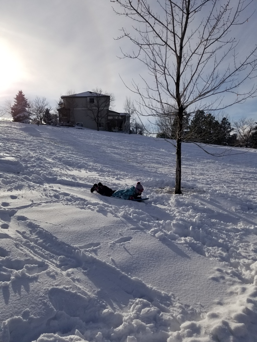 sledding 4