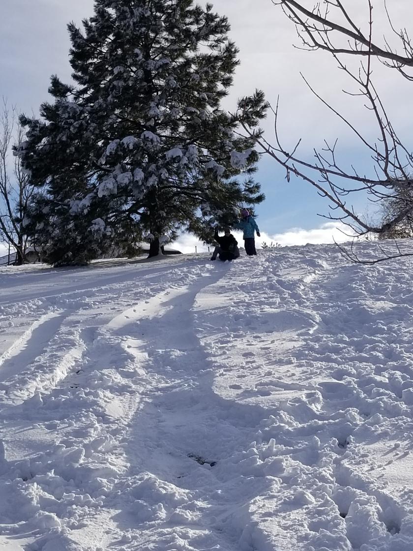 sledding 7