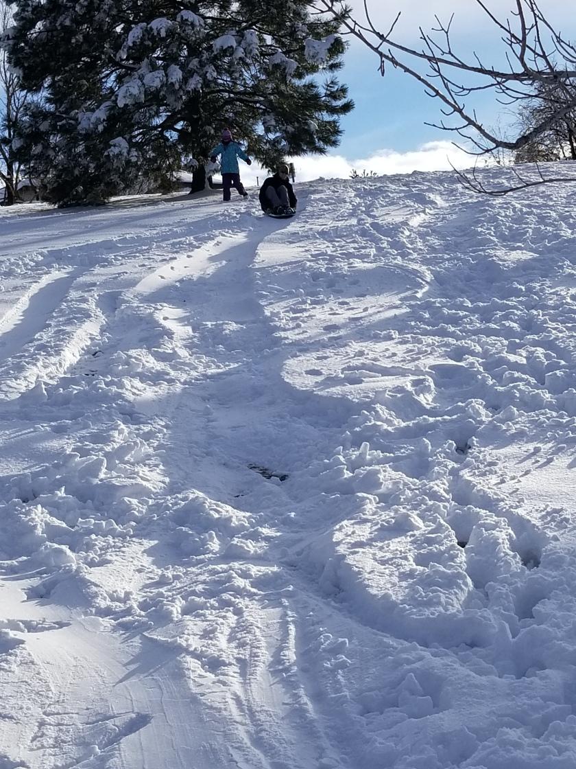 sledding 8