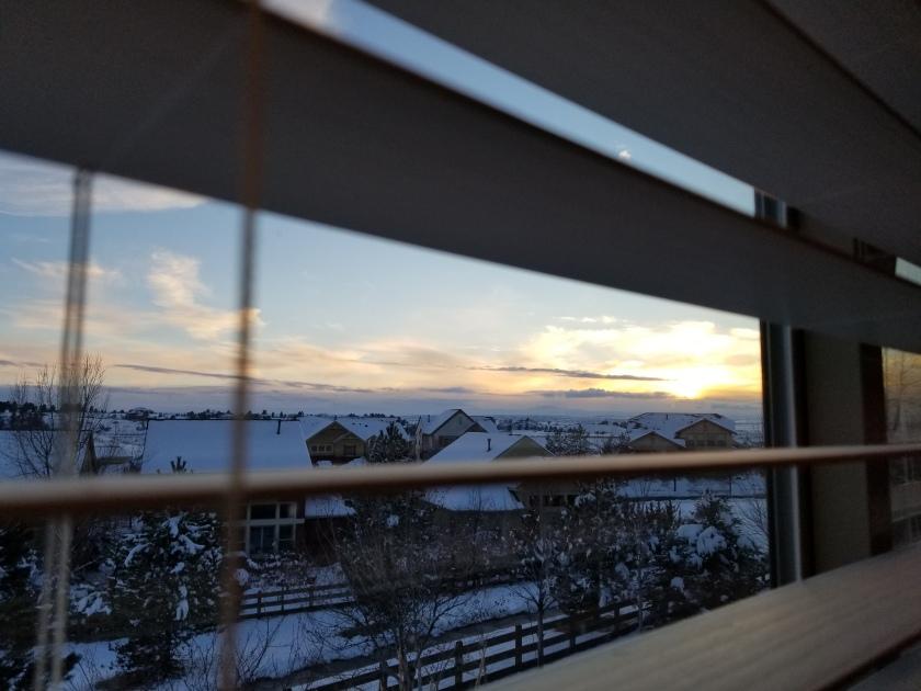 sledding day view