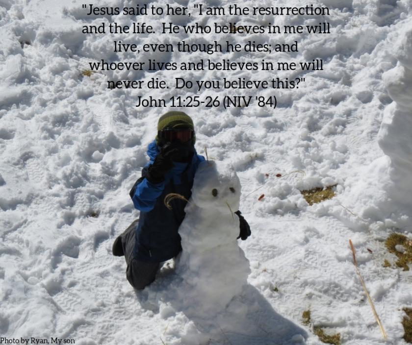 Pic quote John 11 v 25 son