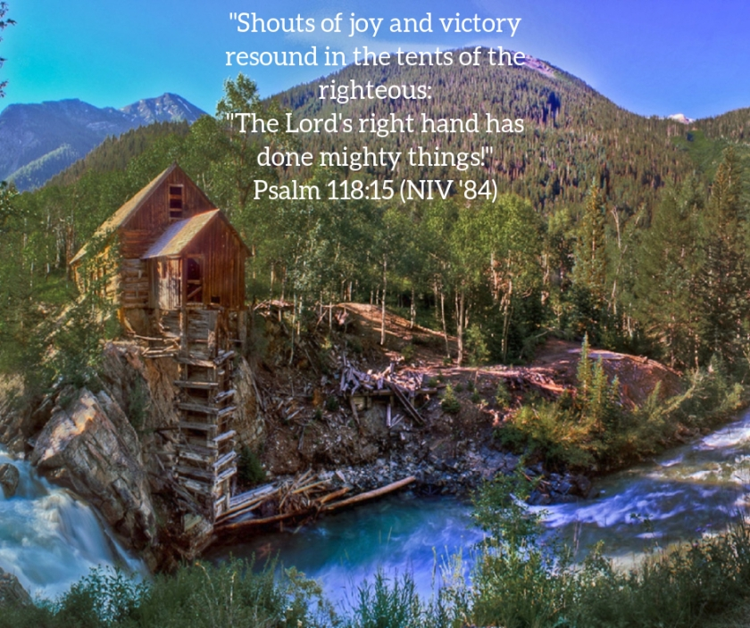 Pic quote Psalm 118 v 15