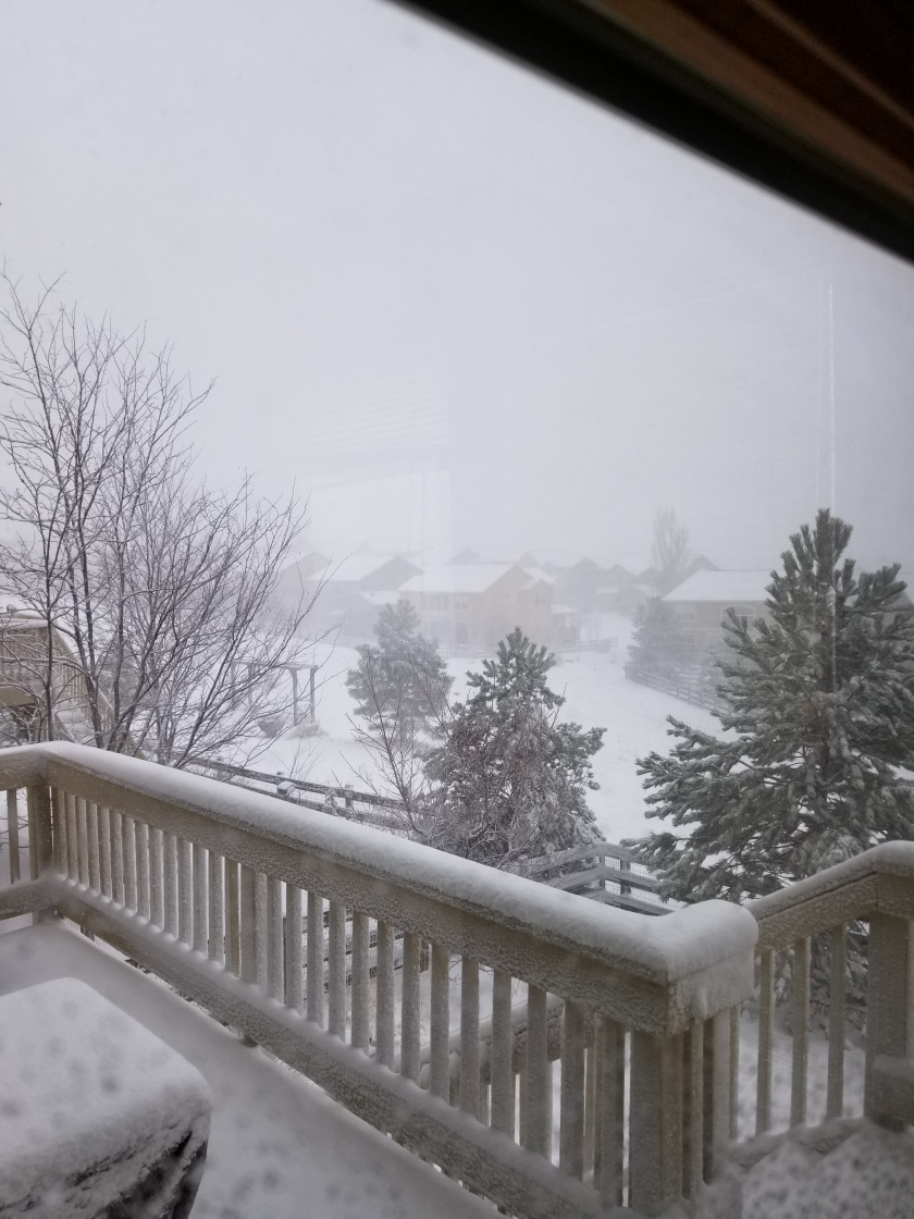 snow storm 2 3-13-19