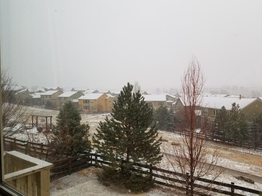 snow storm 3-13-19