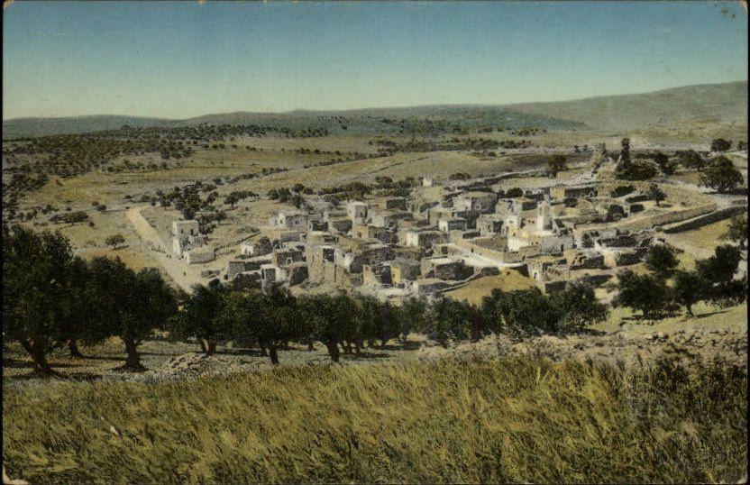 Bethany Israel (2)