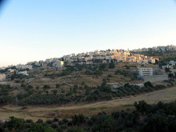 Bethany Israel (3)