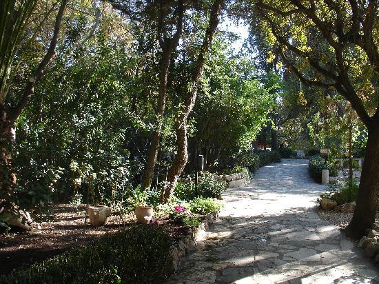 Garden Tomb 5