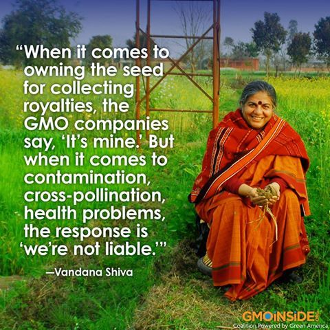 GMO truth India