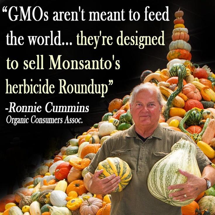GMO truth