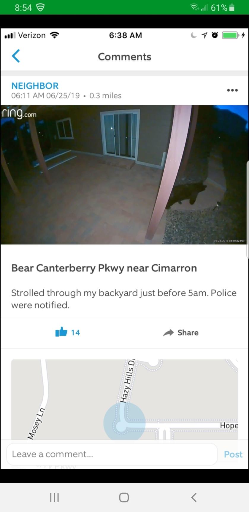 Bear sighting 6-25-19