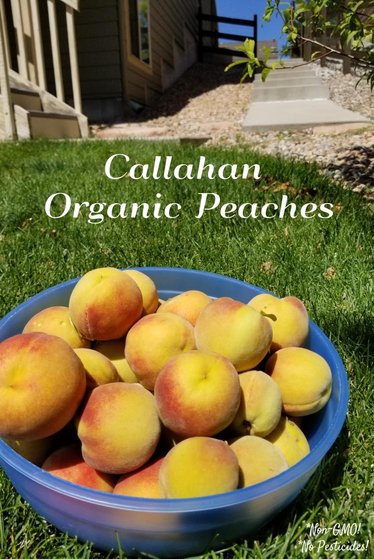 Callahan peaches