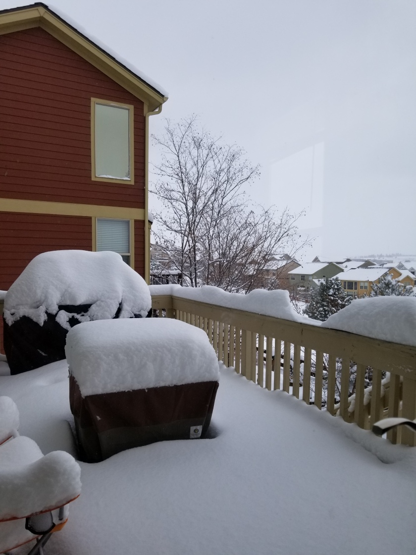 Snow 11-26-19