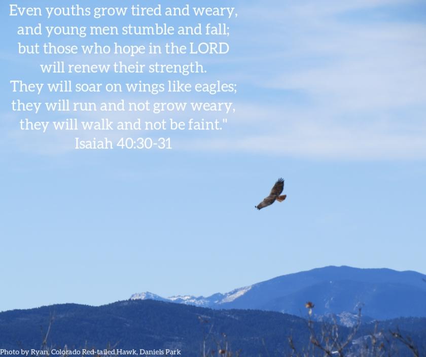 Pic quote Isaiah 40 v 30 v 31